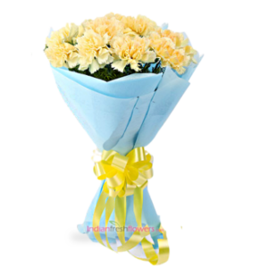 Carnation-Superb-12-Yellow-Carnation