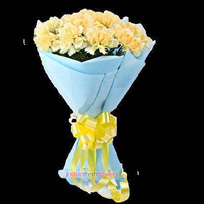 Carnation-Superb-12-Yellow-Carnation